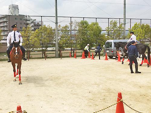 190421_harumatsuri_04.jpg