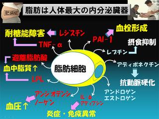 image/_photos_uncategorized_2013_02_19_08.jpg